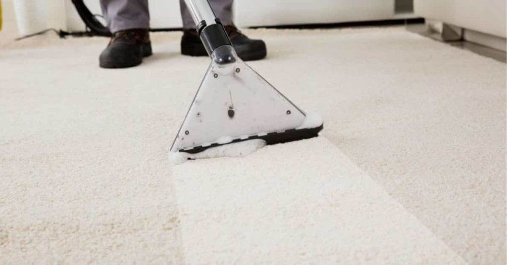 When is the Best Time to Clean My Carpets