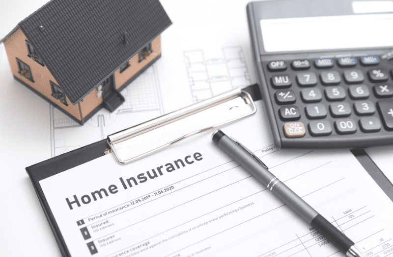 Does Homeowner's Insurance Cover Mold