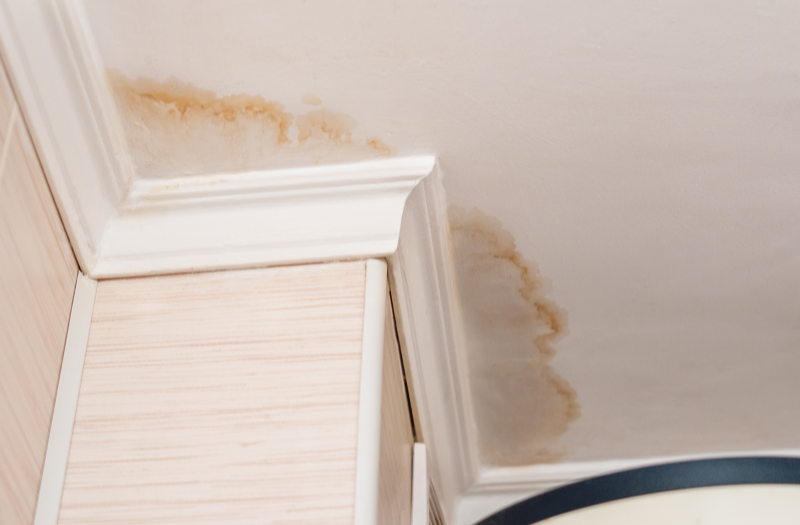 early signs of water damage